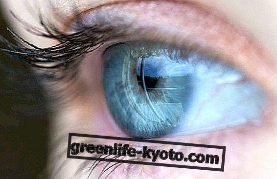 Етерични масла за окото