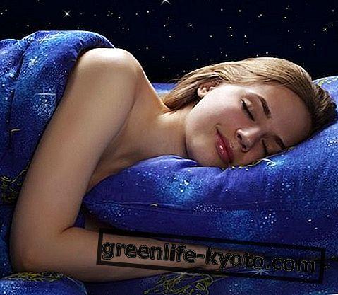 नींद के सिद्धांत, कितने और कौन से हैं