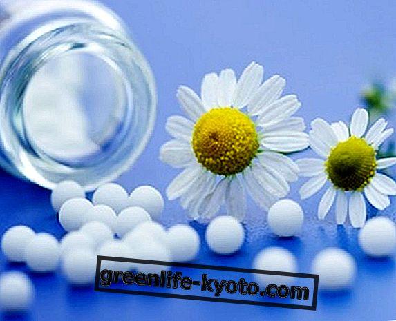 Laten we het hebben over homeopathie: geschiedenis en actuele gebeurtenissen