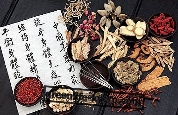Forbindelser mellem kinesisk medicin, akupunktur og shiatsu