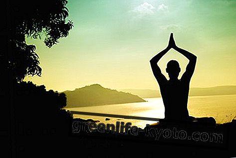 Ииенгар иога: порекло, пракса, користи