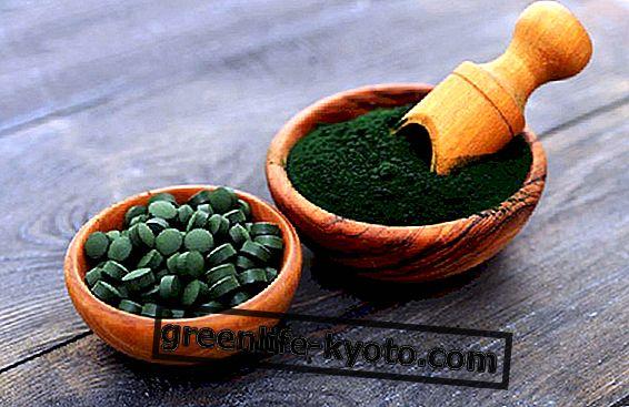 Spirulina: dosificación y beneficios.