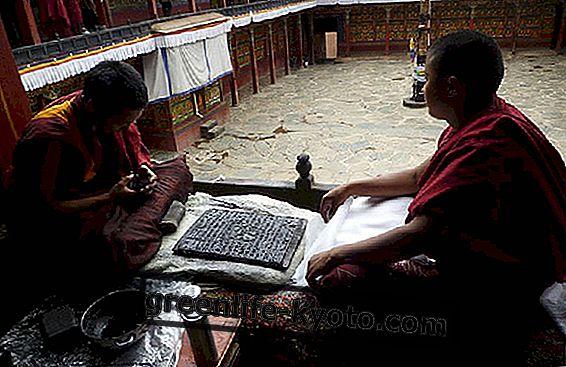 Tibetská zdravotnícka škola