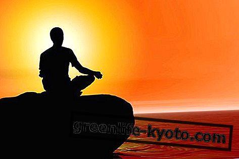 Taoist meditație: tehnică și beneficii
