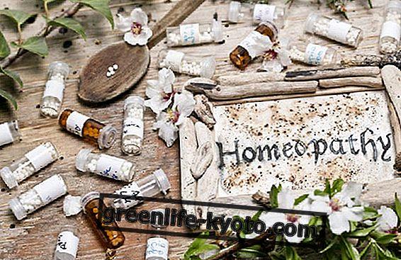 Homeopatiske antiinflammatoriske midler: ved du, hvad de er?  Og hvordan man bruger dem?