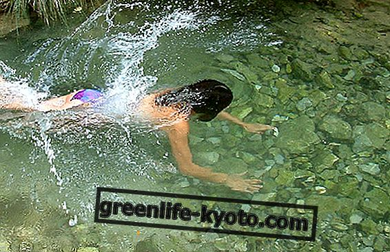 Crenoterapie: pramenitá voda, která léčí