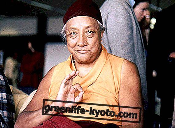 Harmonija između fizioloških energija u tibetanskoj medicini