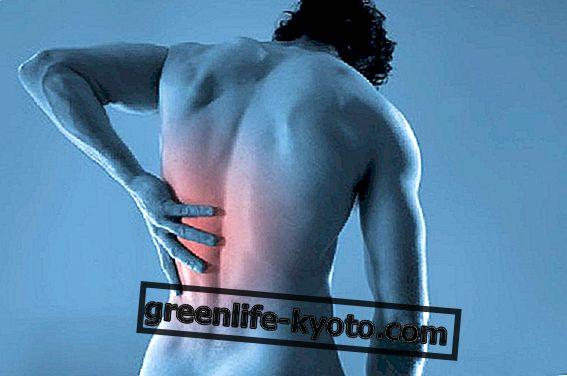 Osteopatija: gerovė kyla iš pusiausvyros