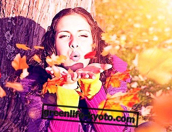 Ændring af sæson og ayurveda: velkommen efterår!
