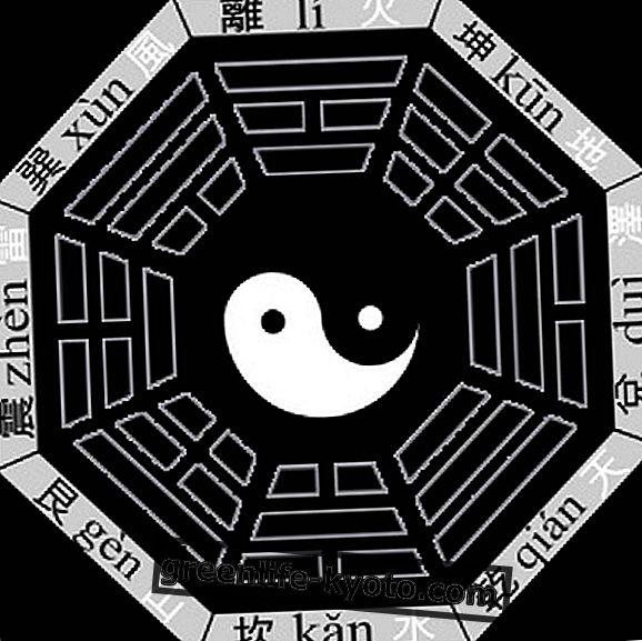 Symbol Pa-kua v taoismu