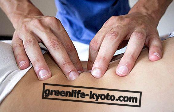 Osteopatía, sentido y cuidado.