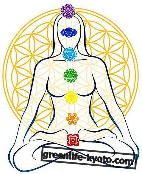 Tantra-yoga: oorsprong, praktijk, voordelen