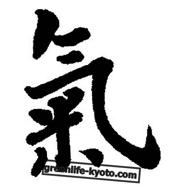 Perinteisen kiinalaisen lääketieteen elintärkeä energia (qi)