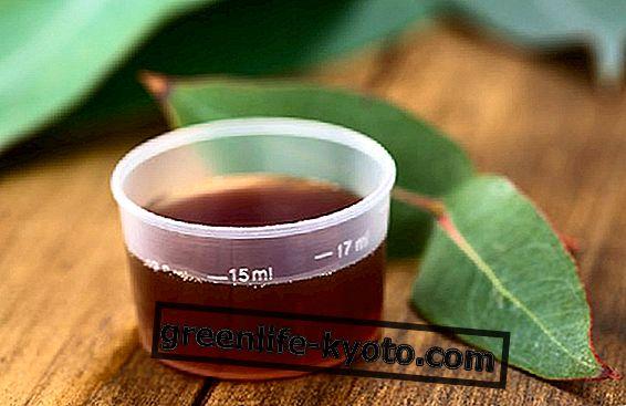 Vet hoest: 3 natuurlijke remedies voor volwassenen en kinderen