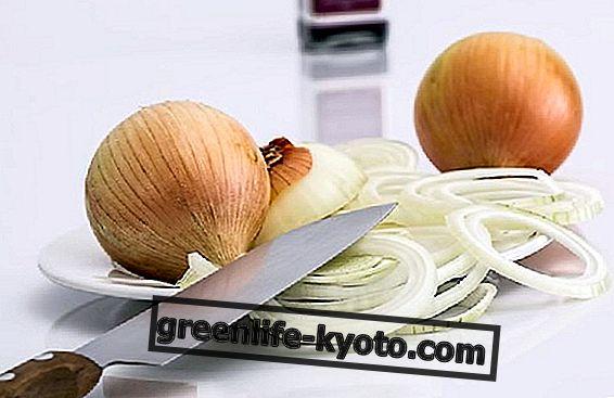 Penki alternatyvūs svogūnų ir visų savybių naudojimo būdai