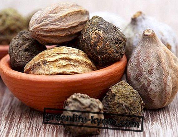 Triphala: combinația ayurvedică de wellness