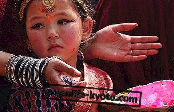 Tibeto medicinos istorija ir kilmė