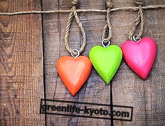 3 remedios espagíricos para el corazón.