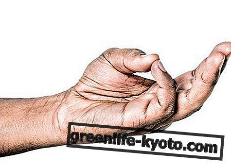 Yoga de manos: orígenes, práctica, beneficios.