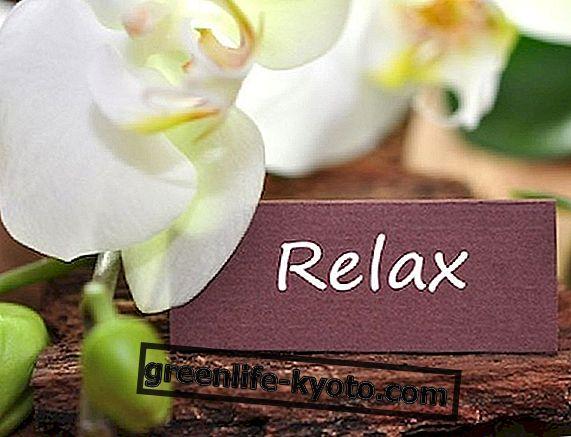 Ayurveda nõu stressi vastu