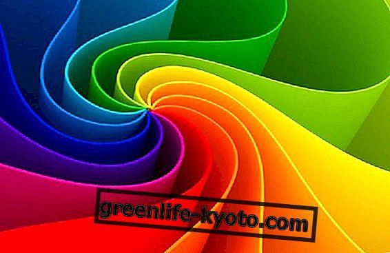 Kolor Wellness: Wellness z energią koloru