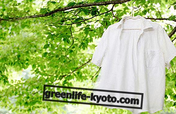 Eco přírodní odstraňovače skvrn: levné, účinné a neznečisťující