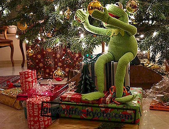 Ideas de regalos para una Navidad eco-sostenible.