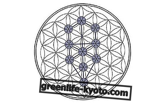 Sephirot: analisis simbol