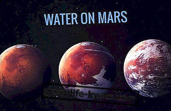 Vanduo Marse ir gyvenimo formų paieška