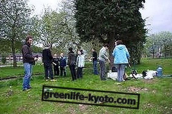 Partizanų sodininkystė, užpuolimas be sodo