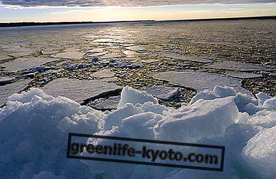 Sulav jää, mida teadlased ütlevad