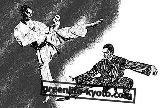 Vechtsporten en jeugdeducatie