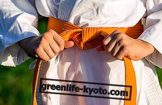 Perdre du poids avec les arts martiaux