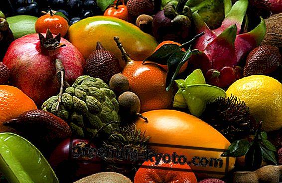 Tropiniai vaisiai, augantys Italijoje