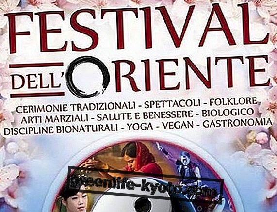 Festival Timur 2014: pantulan pada edisi Rom