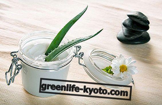 Crema antiarrugas con ácido hialurónico: la receta.