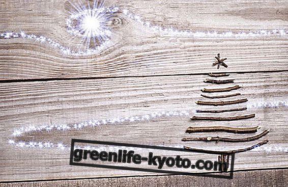 Ιδέες για ένα οικολογικό χριστουγεννιάτικο δέντρο