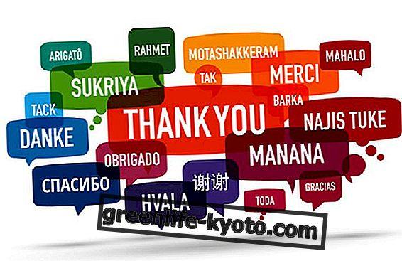 Polyglot, prednosti učenja več jezikov
