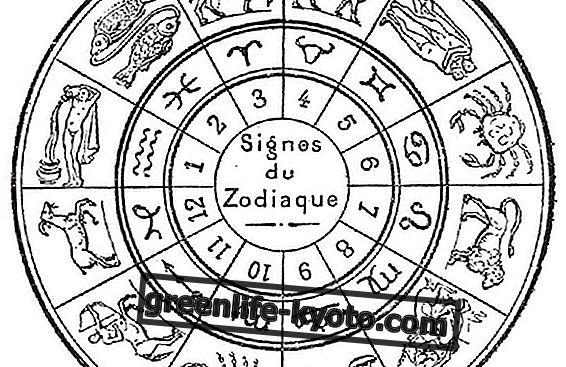 Que sont les maisons astrologiques