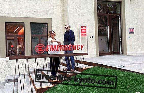 आपातकाल का घर मिलान में पैदा हुआ था