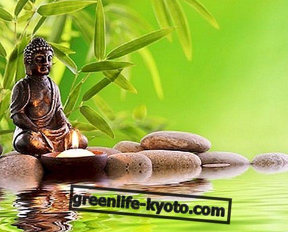 Meditatie, de beste methode verdrijft angst