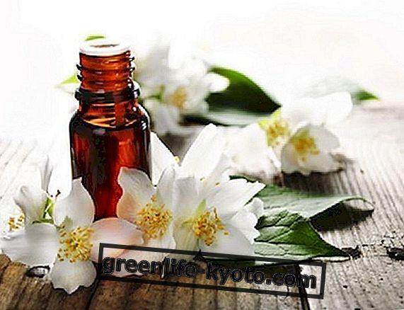 Направете парфюмери за естествена и екологична среда