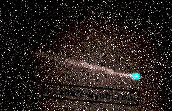 """""""Roheline"""" jõulud komeet on nähtav Itaalias"""