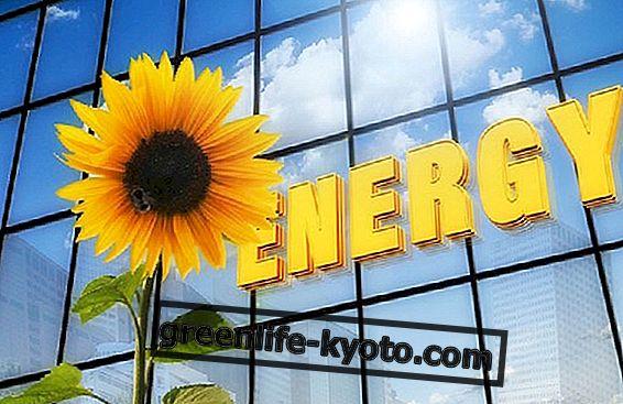 再生可能エネルギー源への欲求