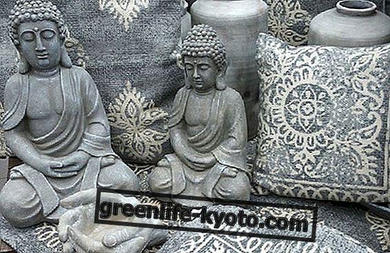 De mantra van transcendente meditatie