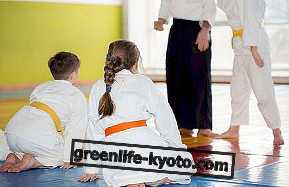 पुरुषों और महिलाओं के बीच मार्शल आर्ट: असुविधा को कैसे रोका जाए