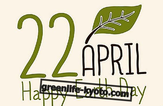 22 de abril, celebra el Día de la Tierra 2016.