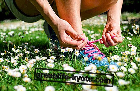 Trīs soļu apmācība, lai sagatavotos vasarai