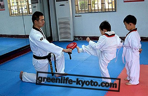Artes marciales chinas, orígenes y estilos.