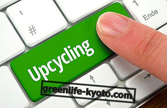 Upcycling, radoša atkārtota izmantošana